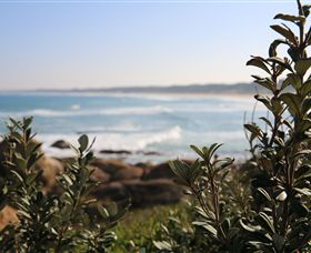 Cape Conran Coastal Park - Tweed Heads Accommodation
