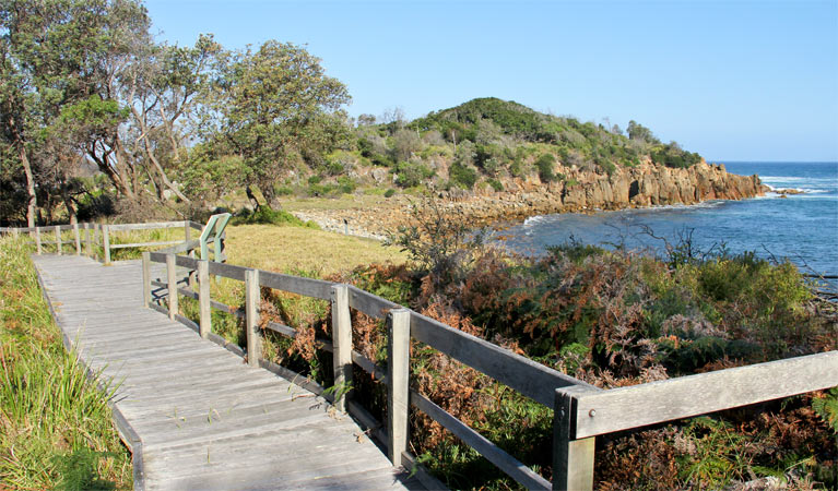 Mimosa Rocks walking track - Tweed Heads Accommodation