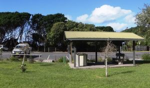 Broken Head picnic area - Tweed Heads Accommodation