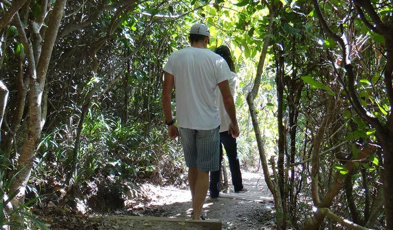 Three Sisters walking track - Tweed Heads Accommodation