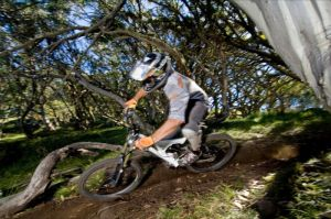 All Terrain Cycles - Tweed Heads Accommodation