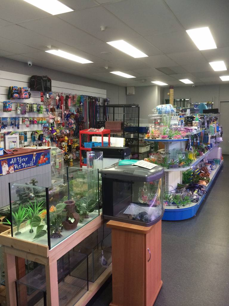 Nambour Pet Shop - Tweed Heads Accommodation