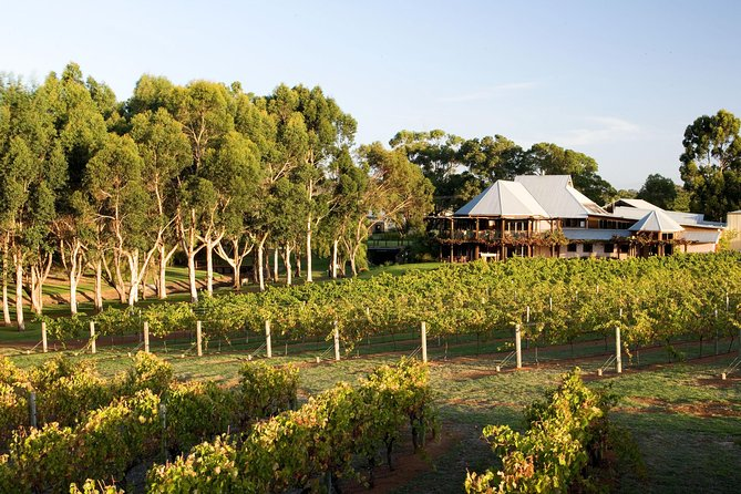 Margaret River and Geographe Bay Region Day Trip from Perth - Tweed Heads Accommodation