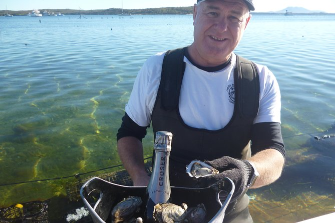 Coffin Bay Oyster Farm  Tasting Tour - Tweed Heads Accommodation