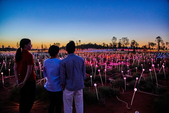 Uluru Field of Light Sunrise Tour - Tweed Heads Accommodation