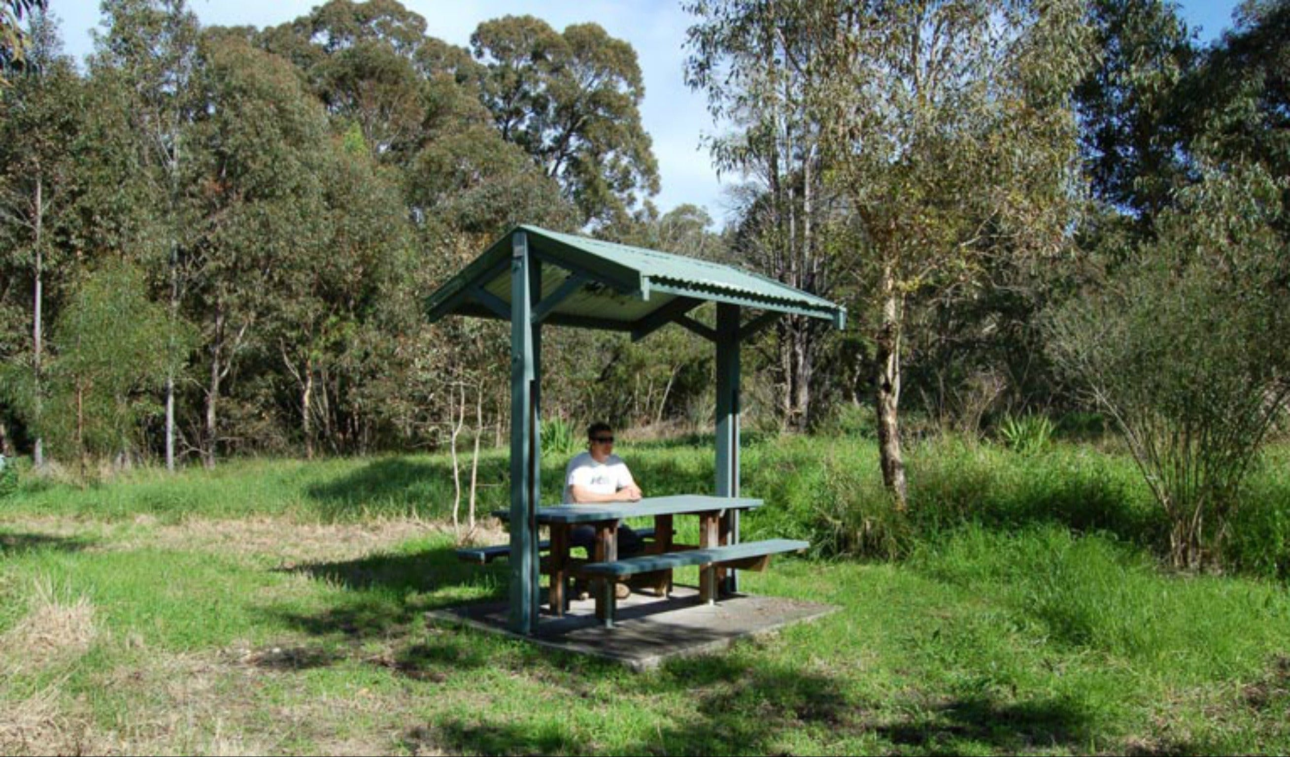 Alexanders picnic area - Tweed Heads Accommodation