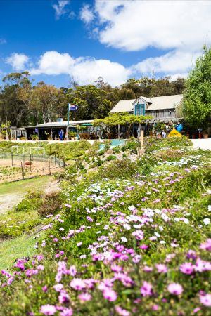 Kate's Berry Farm - Tweed Heads Accommodation