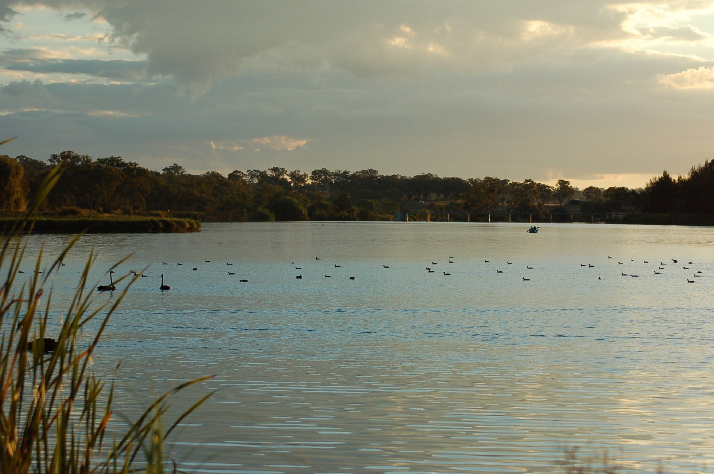 Lake Inverell Reserve - Tweed Heads Accommodation