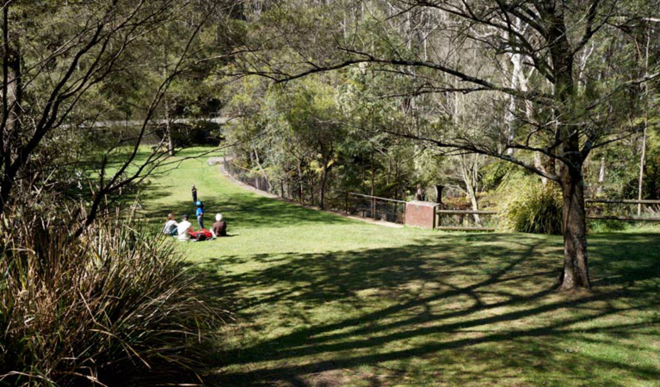 Leura Cascades picnic area - Tweed Heads Accommodation