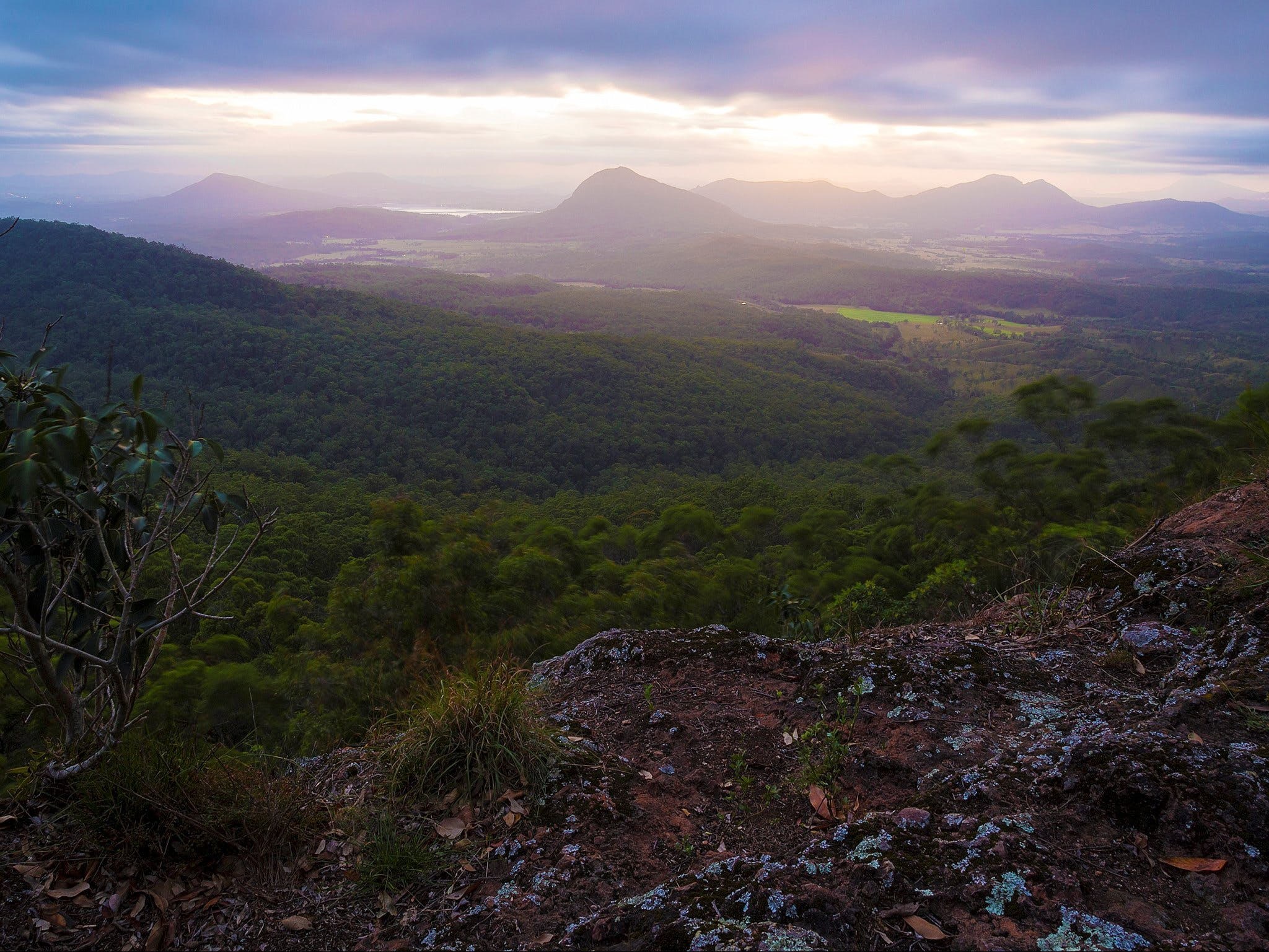 Cunninghams Gap and Spicers Gap Main Range National Park - Tweed Heads Accommodation