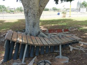 Barcaldine Musical Instruments - Tweed Heads Accommodation