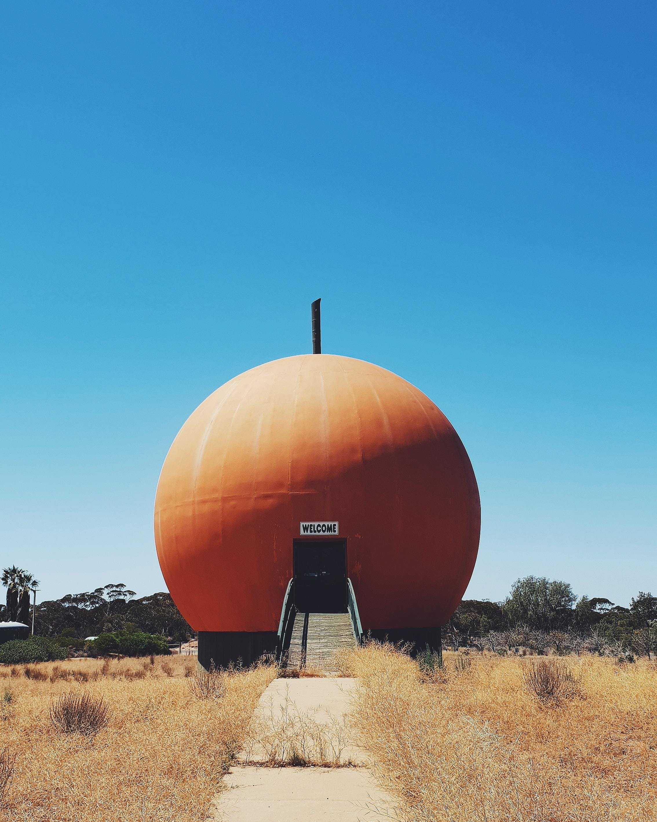 The Big Orange - Tweed Heads Accommodation