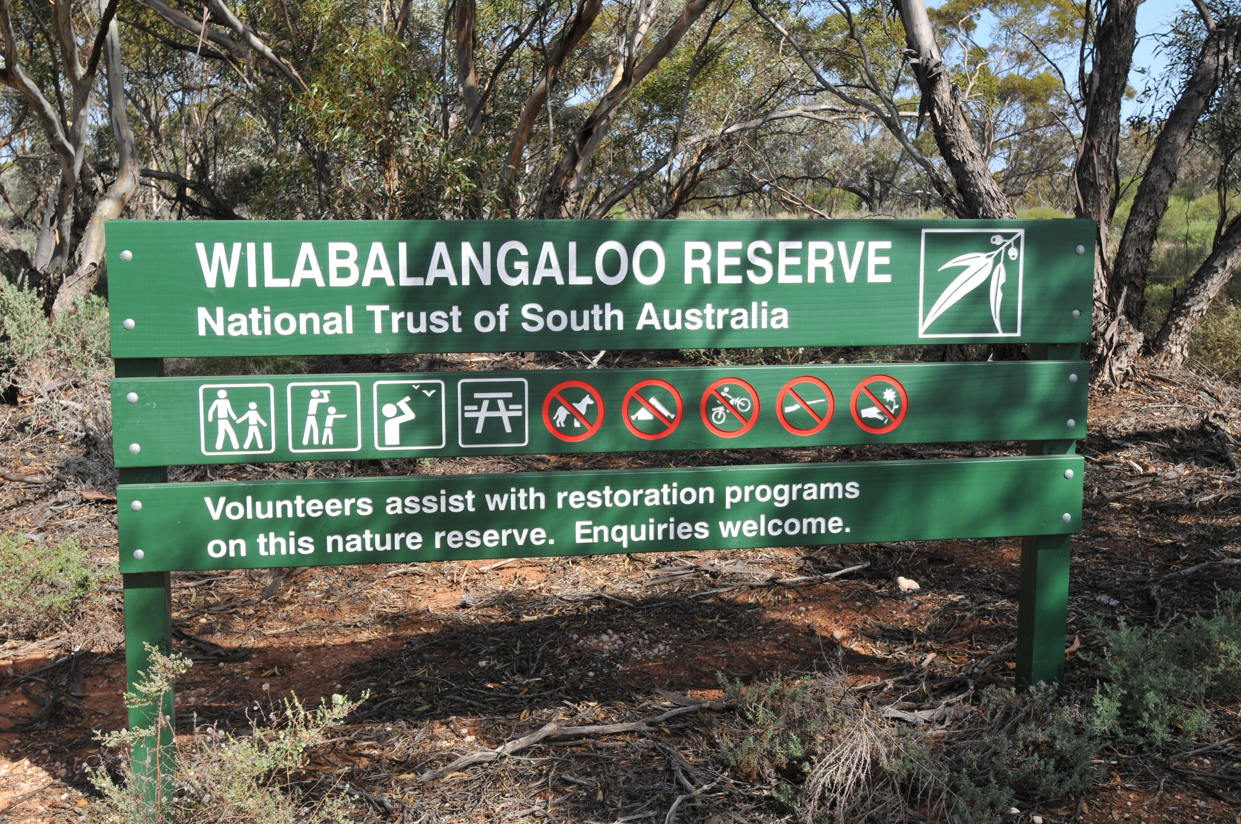 Wilabalangaloo Reserve - Tweed Heads Accommodation