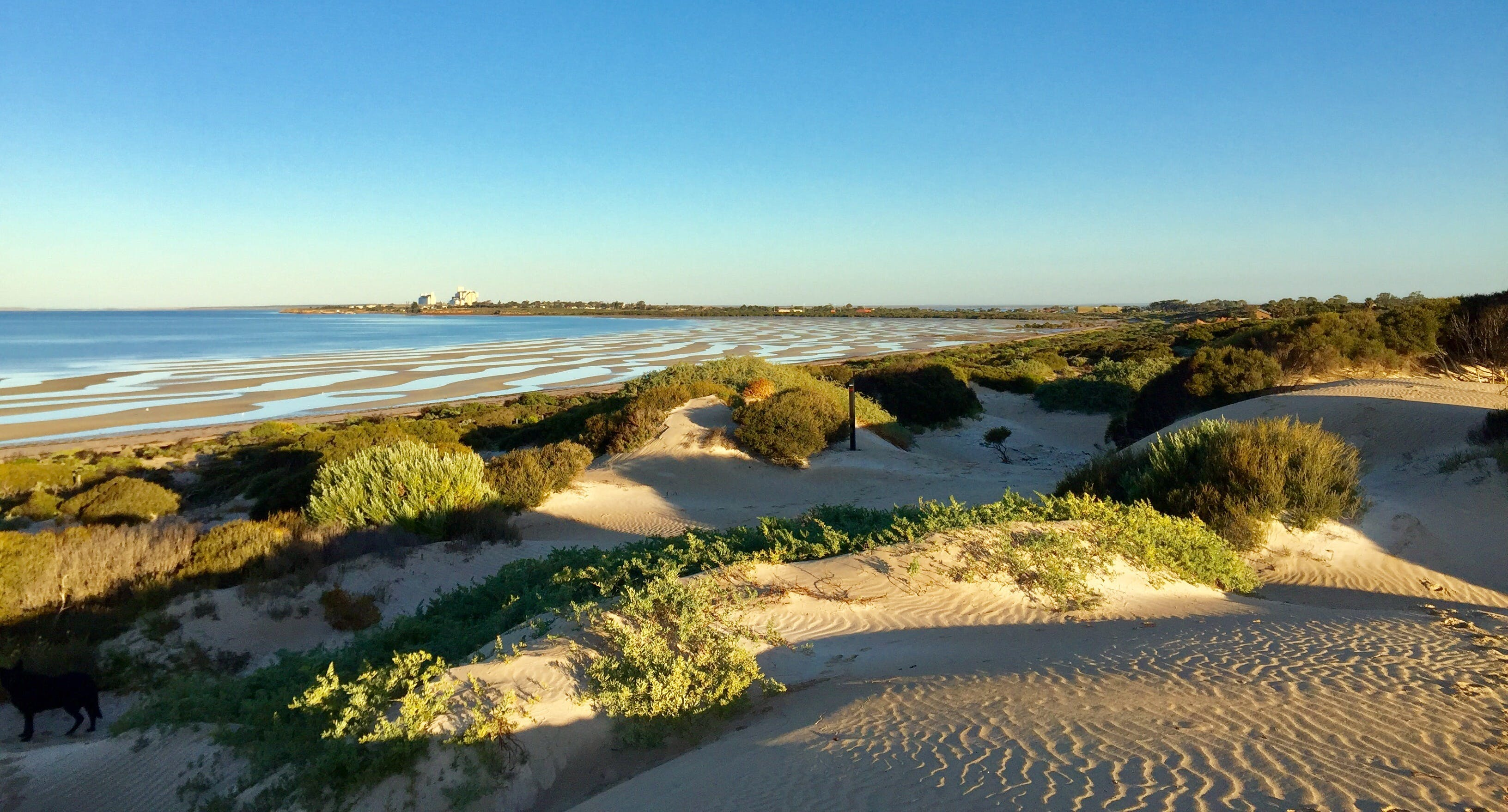 Shelly Beach Dune Walk Trail - Tweed Heads Accommodation