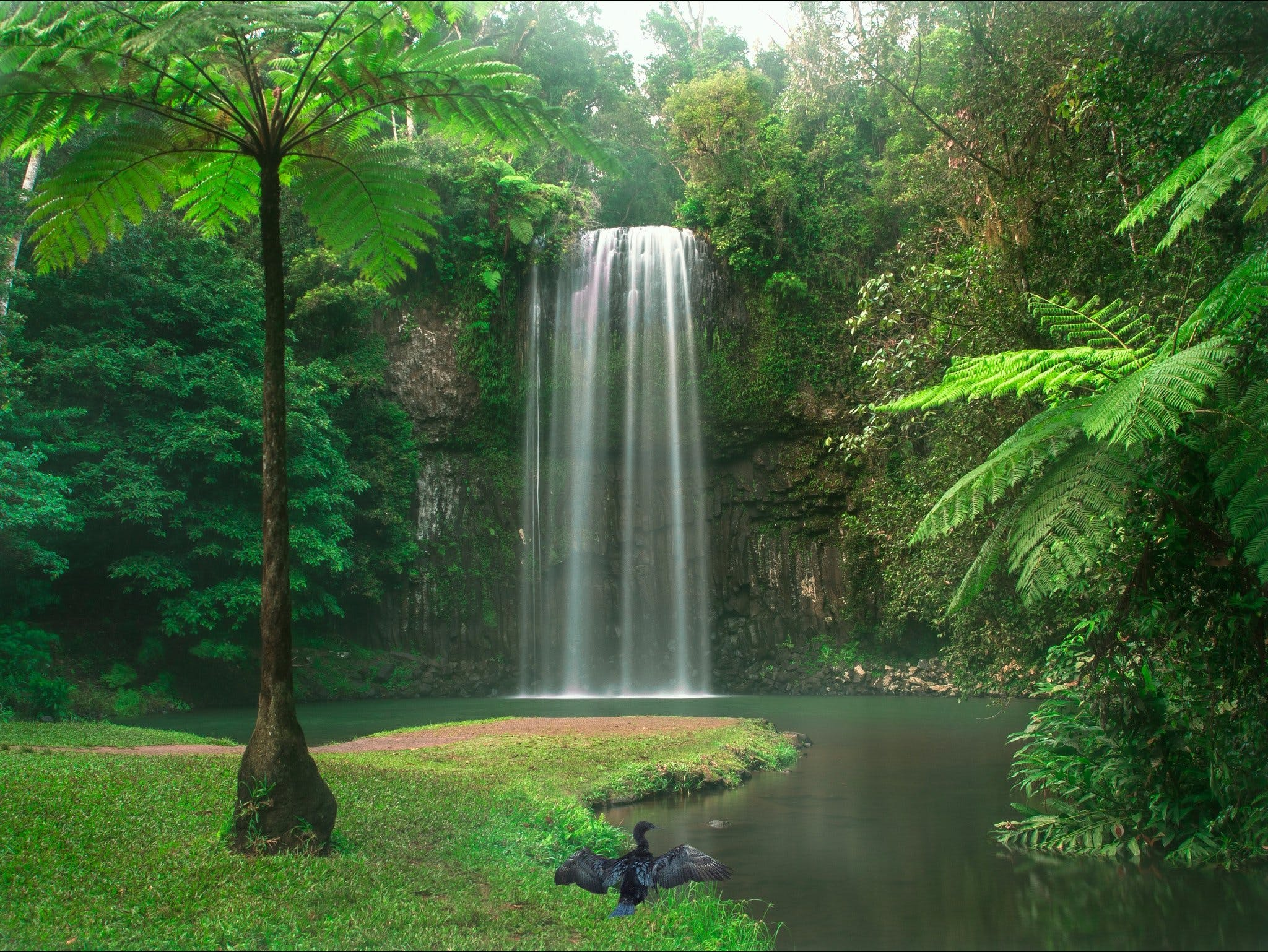 Atherton Tablelands - Tweed Heads Accommodation