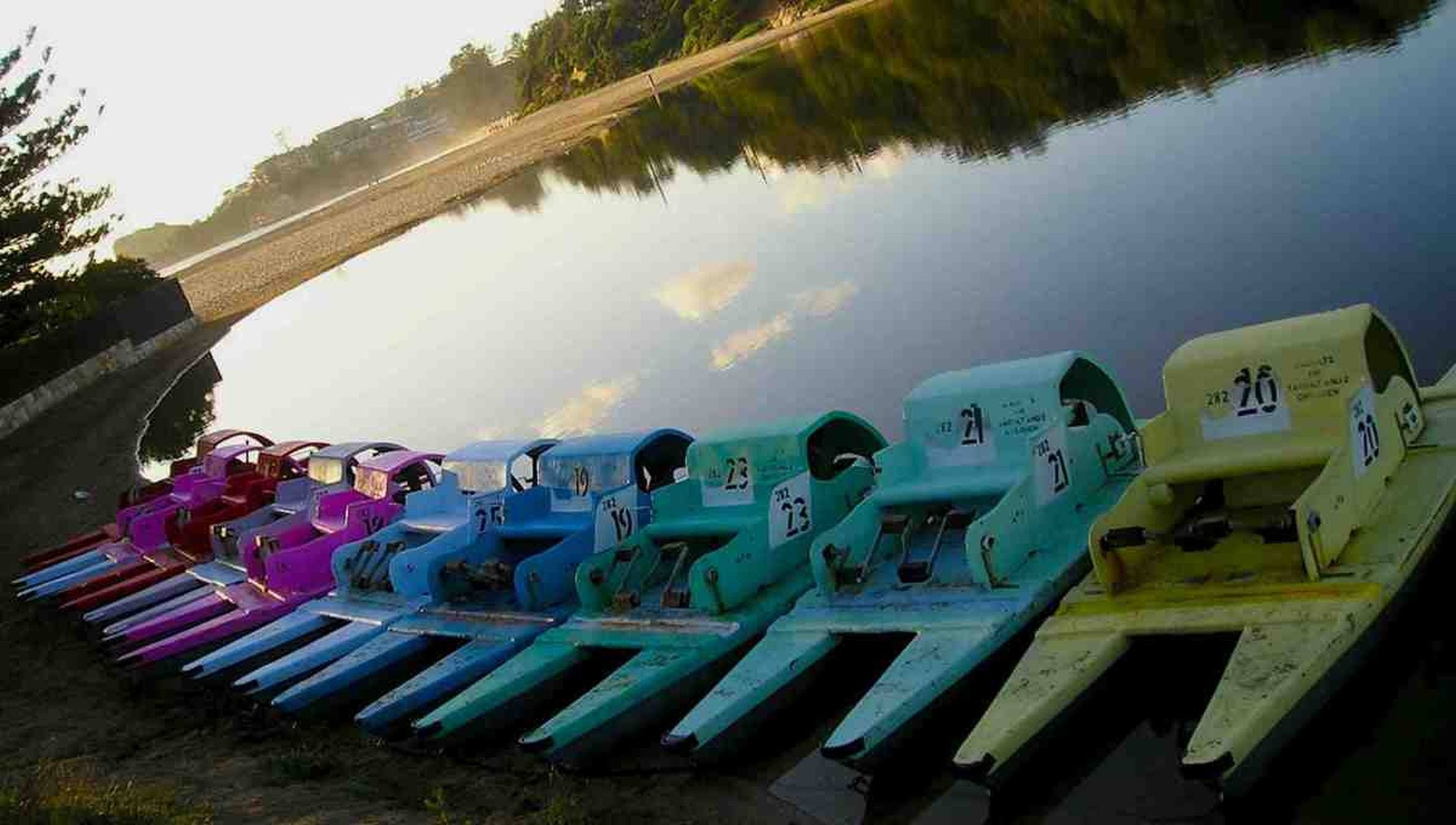 Terrigal Paddle Boats and Stand Up Paddle Boards - Tweed Heads Accommodation