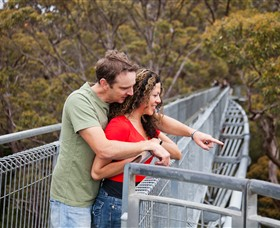 Valley of the Giants Tree Top Walk - Tweed Heads Accommodation
