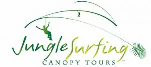 Jungle Surfing Canopy Tours and Jungle Adventures Nightwalks - Tweed Heads Accommodation