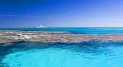 Reef Jet Cruises - Tweed Heads Accommodation