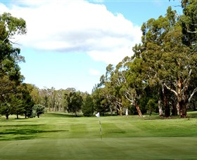 Cooma Golf Club - Tweed Heads Accommodation