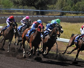 Alice Springs Turf Club - Tweed Heads Accommodation