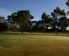 Winchelsea Golf Club - Tweed Heads Accommodation
