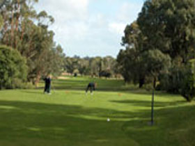 Mount Gambier Golf Club - Tweed Heads Accommodation