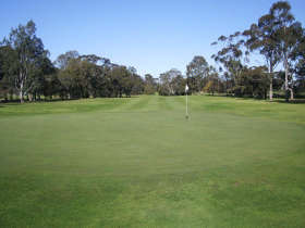 Maffra Golf Club - Tweed Heads Accommodation