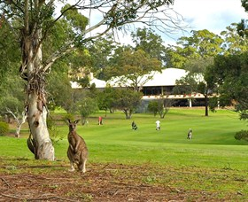 Pambula Merimbula Golf Club - Tweed Heads Accommodation
