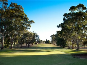 Loxton Golf Club - Tweed Heads Accommodation