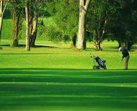 Foster Golf Club - Tweed Heads Accommodation