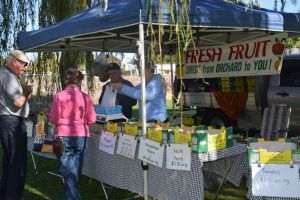 Corowa Rotary Federation Festival Market - Tweed Heads Accommodation