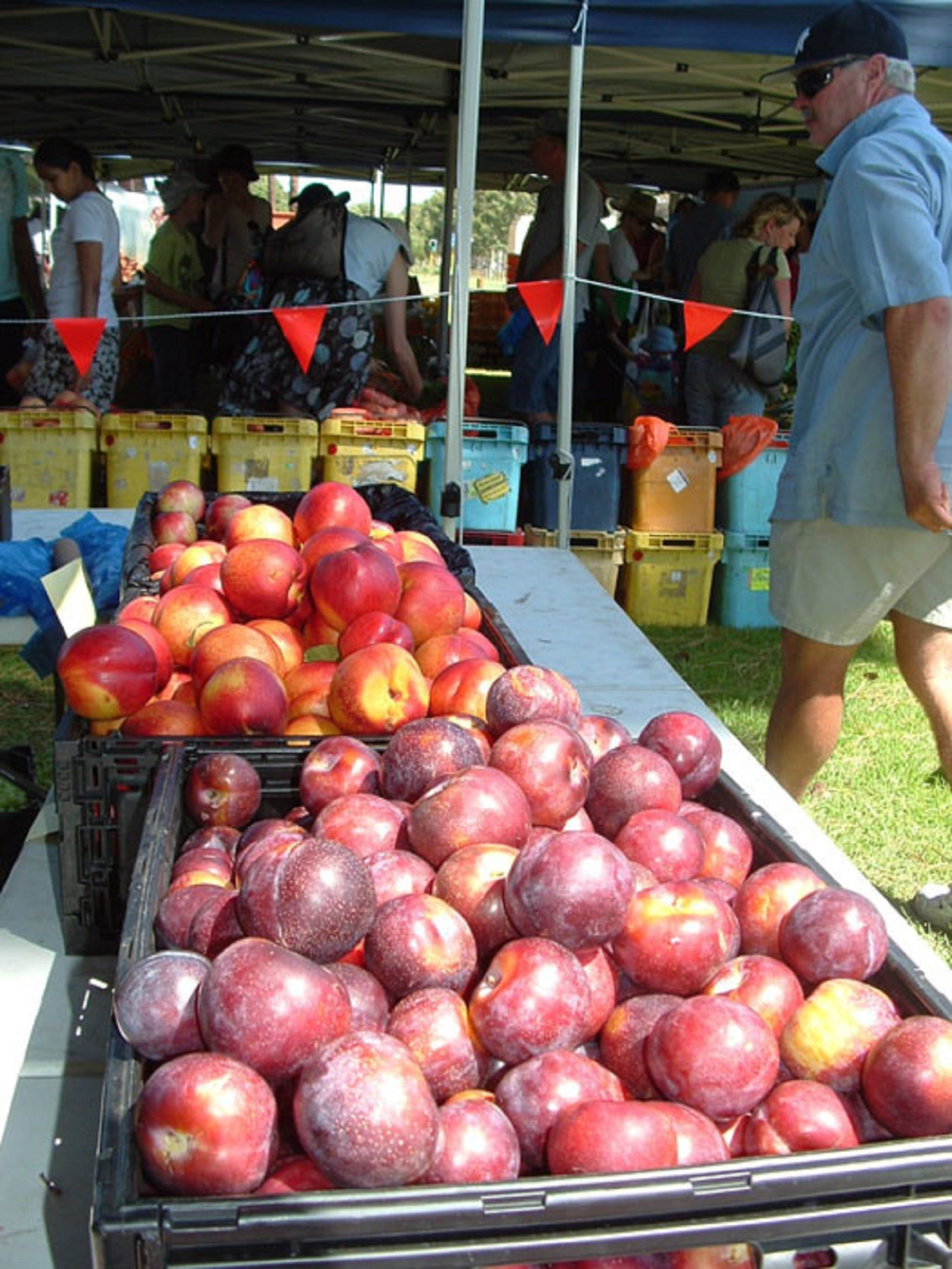 The Farmers Market on Manning - Tweed Heads Accommodation