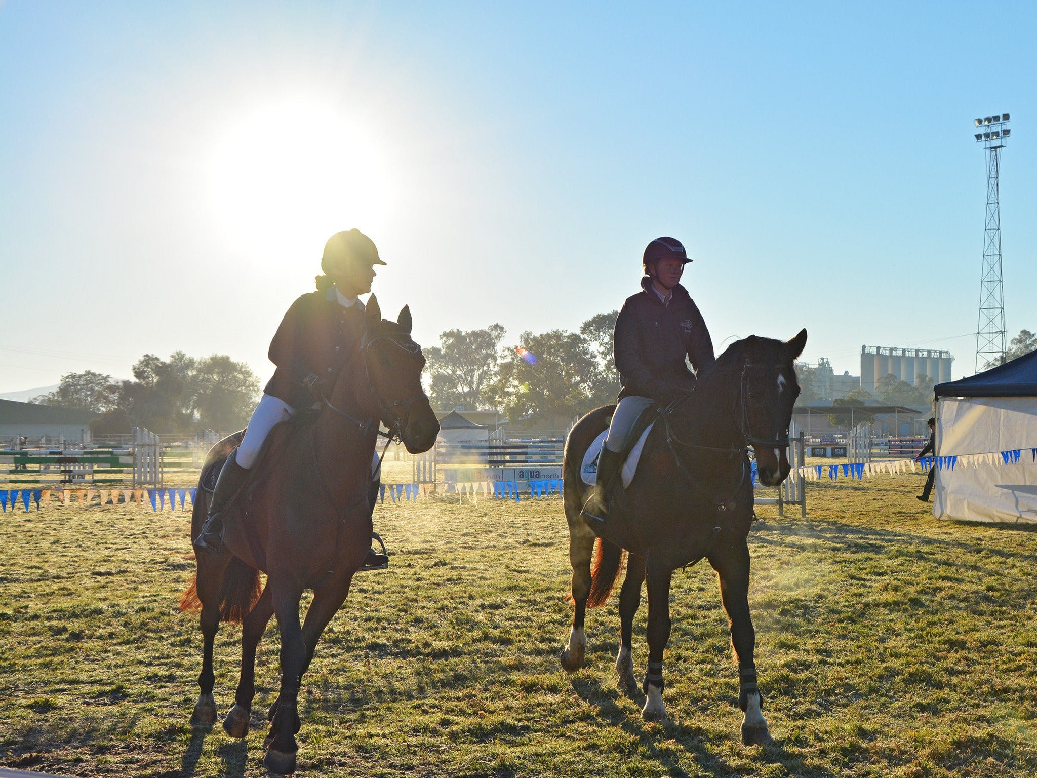 Gunnedah Showjumping Festival - Tweed Heads Accommodation