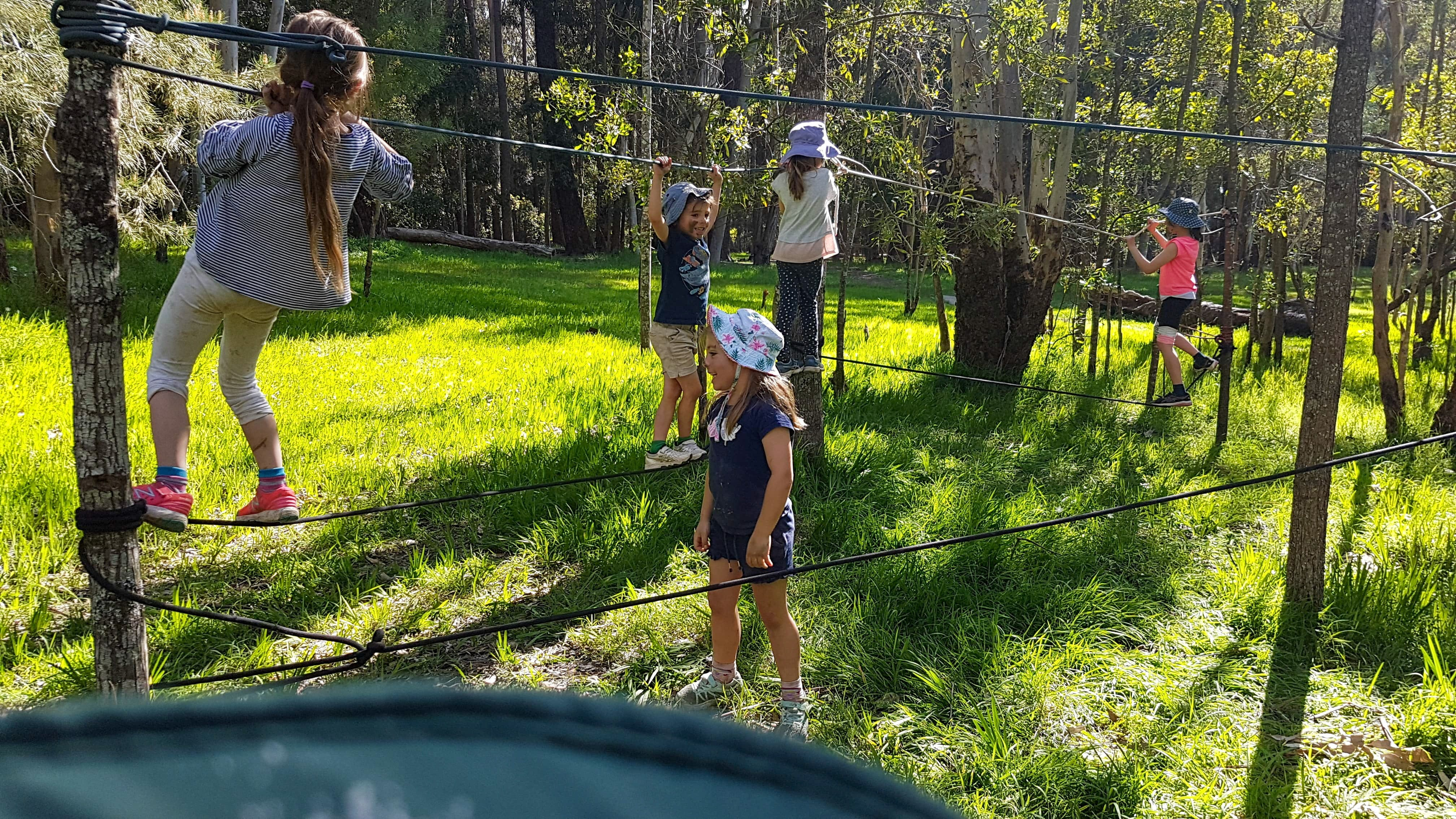 July 2020 Holidays- Forest Smores  Explore - Tweed Heads Accommodation