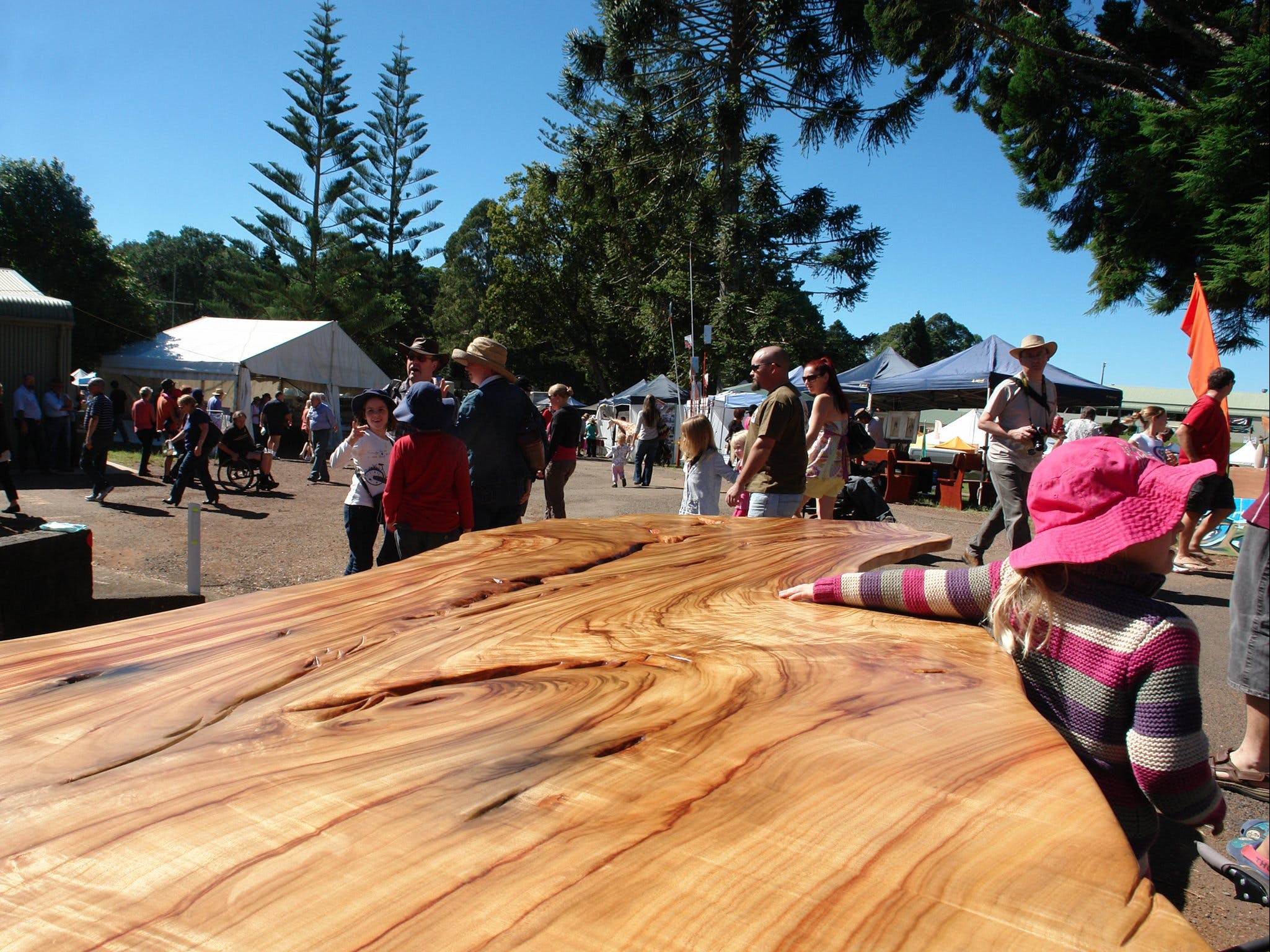 Maleny Wood Expo From Seed to Fine Furniture - Tweed Heads Accommodation