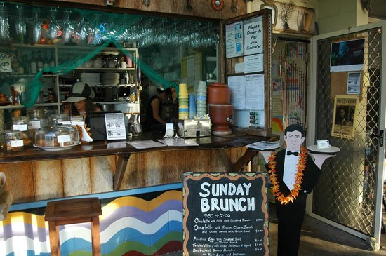Sheoak Shack Gallery Cafe - Tweed Heads Accommodation
