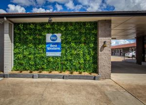 Best Western Endeavour Motel - Tweed Heads Accommodation