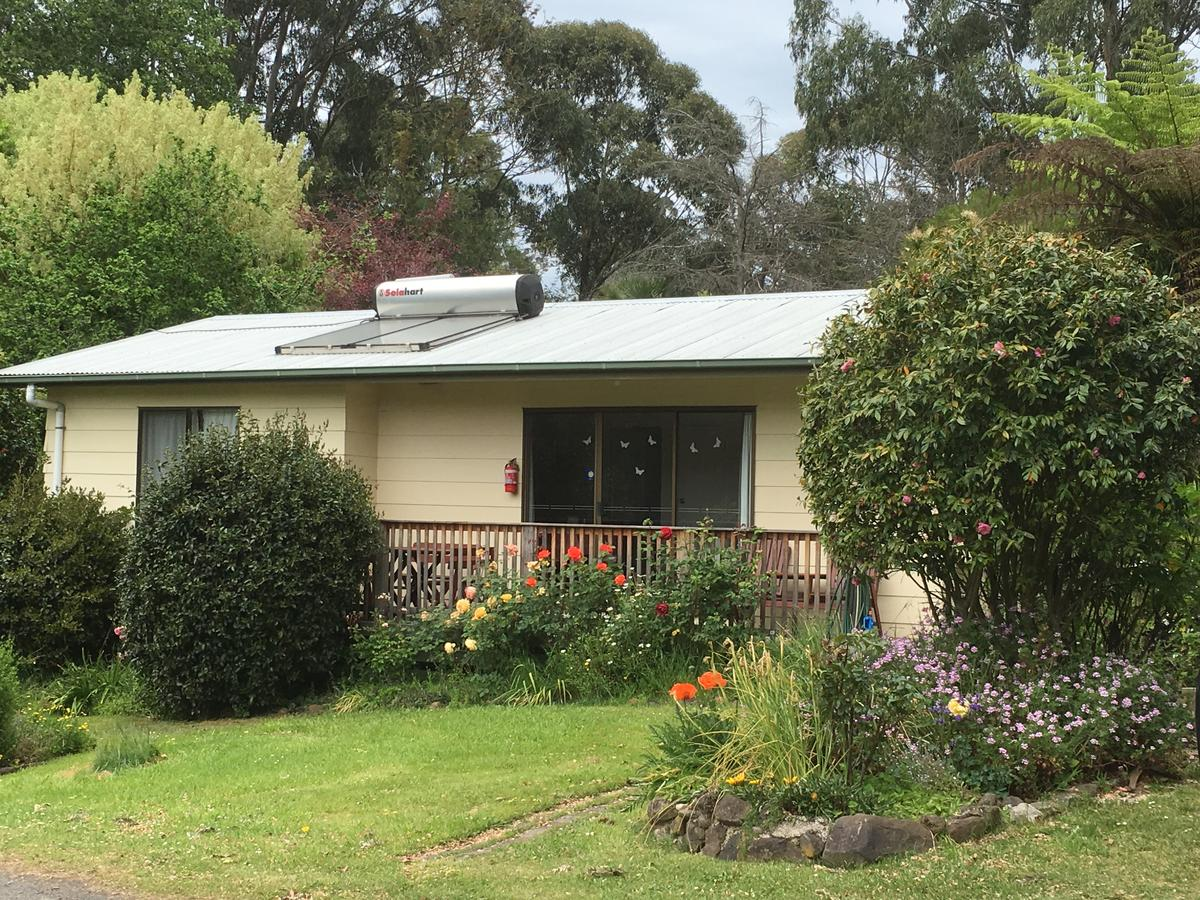 Strathmore Farm BB - Tweed Heads Accommodation